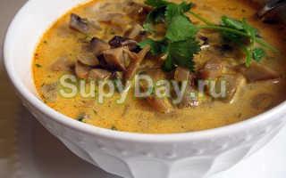 Лапша с белыми грибами: рецепты с замороженными, сухими и свежими грибами