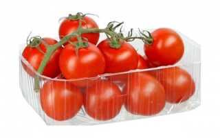 Выращивание рассады томатов в торфяных горшочках и таблетках