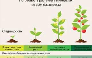 Хелатные удобрения: виды, названия, что это такое, чем полезны для растений
