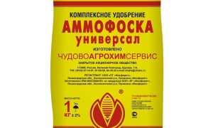 Аммофоска как удобрение: когда и где применять, нормы внесения для картофеля, для роз