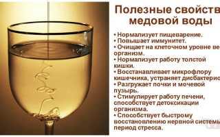 Вода с лимоном и медом: рецепты напитка для похудения, для здоровья организма