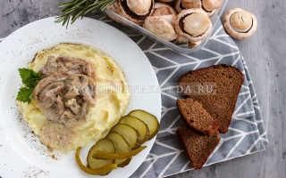 Маслята жареные (тушеные) в сметане: как пожарить, потушить на сковороде, в духовке, со сметанным, грибным соусом