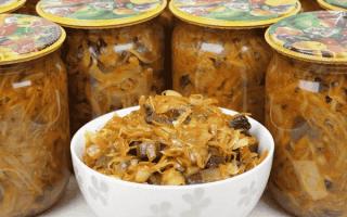 Солянка с шампиньонами: с капустой, колбасой, на зиму, пошаговые рецепты с фото