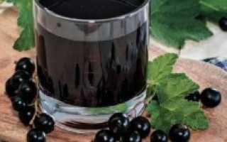 Сок из черной смородины на зиму: польза и вред, рецепты через соковыжималку
