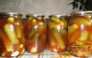 Огурцы с кетчупом чили без стерилизации на зиму: маринованные, консервированные, хрустящие