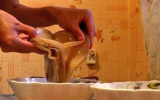 Как разделить чайный гриб в домашних условиях: как размножить, как отделить слой, пересадить в другую