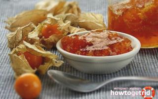 Варенье из физалиса с лимоном: наивкуснейший рецепт, как приготовить