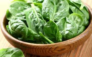 Шпинат огородный: выращивание из семян, уход, полезные свойства