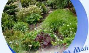Лунный (посевной) календарь огородника на май 2020 года