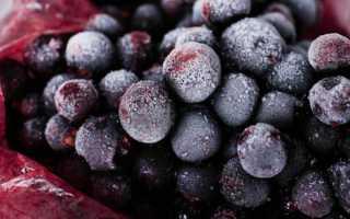 Как заморозить смородину на зиму в морозилке: заморозка ягод с сахаром и без