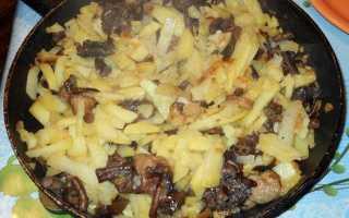 Жареные сыроежки с картошкой: как приготовить, рецепты с фото, видео