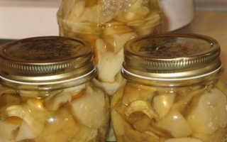 Маслята с лимонной кислотой (без уксуса): быстрые, вкусные и простые рецепты грибов на зиму