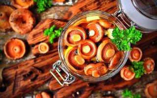 Салаты из соленых, маринованных, жареных и свежих рыжиков