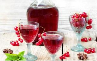 Вино из красной смородины домашних условиях: рецепты, как приготовить