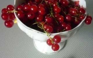 Сок красной и белой смородины на зиму: польза и вред, как сделать, рецепты