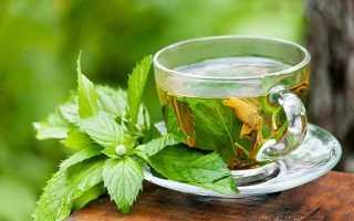 Чай из листьев смородины: чем полезен, как правильно заваривать, вред