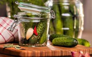 Огурцы на зиму с аспирином: маринованные, хрустящие, соленые, консервированные
