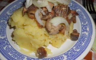 Рыжики с картошкой, жаренные в сметане: как приготовить, рецепты