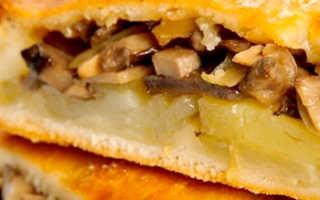 Пирог с груздями: солеными и свежими, как приготовить в духовке, лучшие рецепты