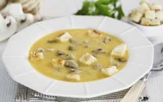 Грибной суп из шампиньонов с картофелем: лучшие пошаговые рецепты приготовления с фото, как приготовить в мультиварке, видео