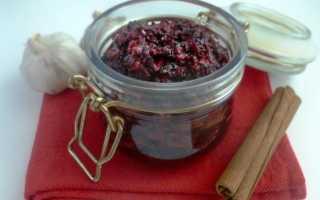 Соус из черноплодной рябины: рецепты на зиму