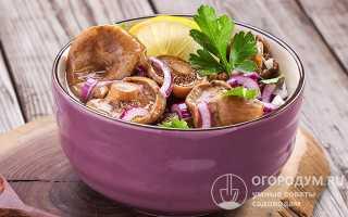 Волнушки: способы приготовления на зиму в банках, вкусные рецепты консервирования, как заготовить грибы