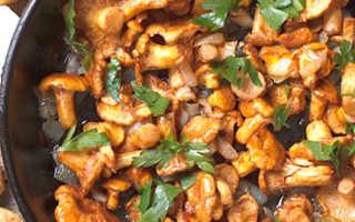 Лисички жареные: рецепты на сливочном масле, сале, с сыром, майонезом