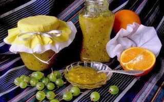 Конфитюр из крыжовника на зиму: простые рецепты без косточек, через мясорубку, с апельсином, в мультиварке