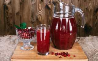 Клюквенный морс – рецепт из замороженных ягод