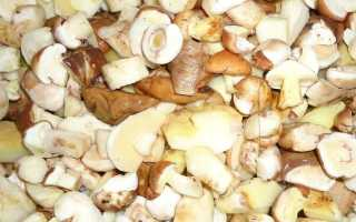 Сколько варить маслята: для маринования, перед заморозкой, для жарки и супа