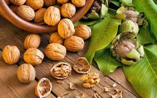 Грецкий орех: польза и вред для мужчин и женщин, состав, калорийность