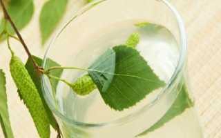 Брага на березовом соке для самогона: как поставить
