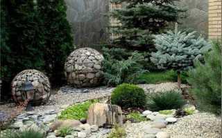 Рокарий из хвойников (альпийская горка): названия сортов, фото в ландшафтном дизайне