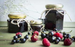 Варенье из малины и черной смородины: ингредиенты, рецепт, как сварить