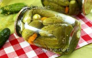 Огурцы по-польски: самые вкусные рецепты засолки на литровую банку, без стерилизации