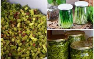 Как солить черемшу в домашних условиях: рецепты на зиму, польза