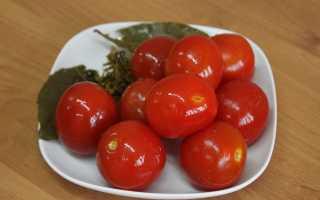Засолка помидор холодным способом: в ведре, в кастрюле, в банках, в бочке