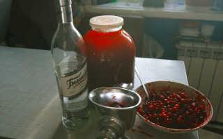 Настойка из брусники в домашних условиях: рецепты на самогоне, на водке, на спирту