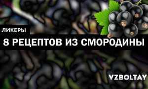 Домашний ликер: рецепты из черной смородины на водке