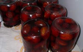 Слива в собственном соку на зиму: рецепты с сахаром, без сахара