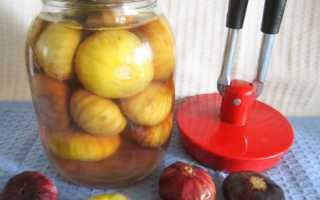 Компот из свежего инжира на зиму: польза, рецепты с яблоками, виноградом