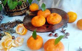 Закуска Мандарины: пошаговые рецепты с фото, острая, из сыра, с морковью