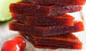 Пастила из вишни: рецепты с фото в домашних условиях в электросушилке, в духовке, видео